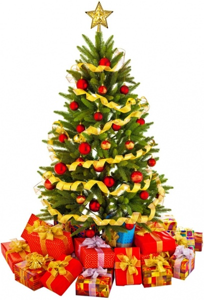 Christmas Tree Pictures High Resolution :