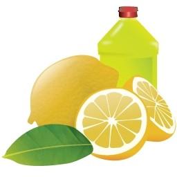 レモンの無料アイコン 29 Kb 無料素材イラスト ベクターのフリーデザイナー